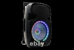 Powered 12 DJ Karaoke Speaker Rechargeable Bluetooth LED Wireless Mics Remote