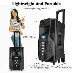 Bluetooth Karaoke Machine + Wireless Pa Speaker System + 2 Wireless MIC + Remote