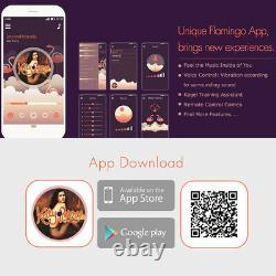 Sans Fil Bluetooth App À Distance Vibration Control Kegel Exerciser Balls Massager