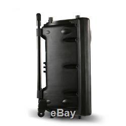 Système De Haut-parleurs De Sonorisation Portable Bluetooth 12 Micro Sans Fil À Distance Dj Speaker 1500w